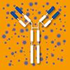 Allergologie/Neue Immuntherapeutika
